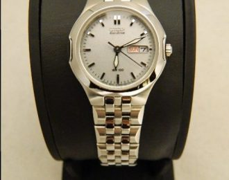 Citizen Eco-Drive EW3120-59A Watch