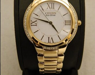 Citizen Eco-Drive EM0093-59A Watch